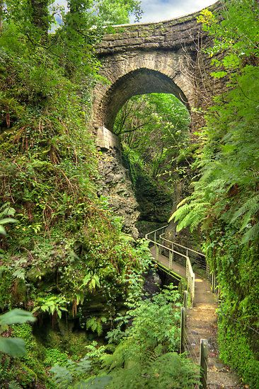 Lydford Gorge is reasonably protected from the rain so if you want to take a walk on a wet day, go there!