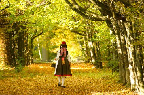 In Germania per riscoprire le fiabe dei Fratelli Grimm attraverso la German Fairy Tale Route (Cappuccetto Rosso in foto)