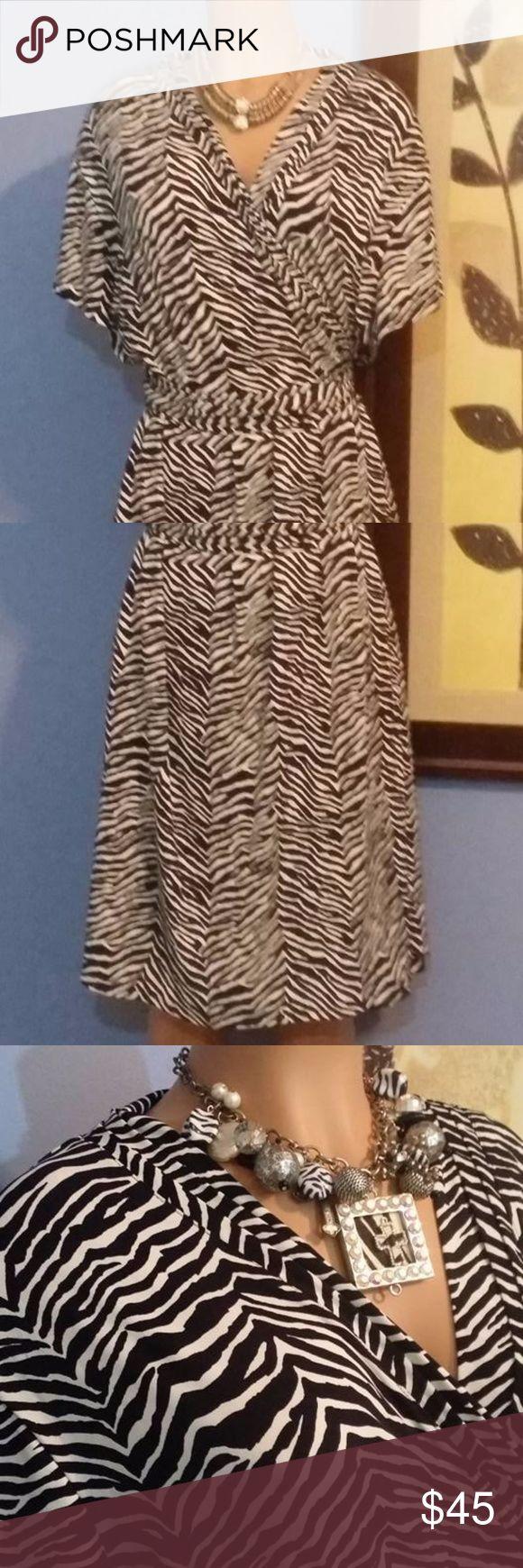 Zebra Print Dress Perfect for the bold and confident curvy chick  Black & White Zebra Print Dress Dresses