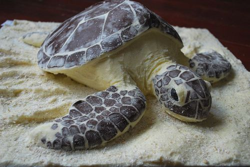 sea turtle cake that @Kristin Cardwell is making me for my birthday.