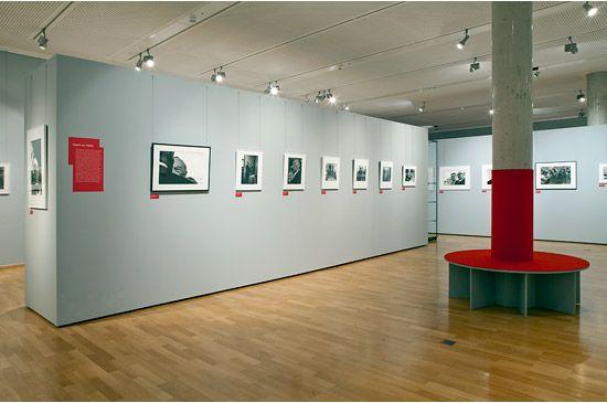 Risultati immagini per museo colore pareti