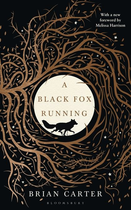 14 best pre designed book covers images on pinterest cover art a beautiful lost classic of nature writing which sits alongside tarka the otter watership down fandeluxe Choice Image