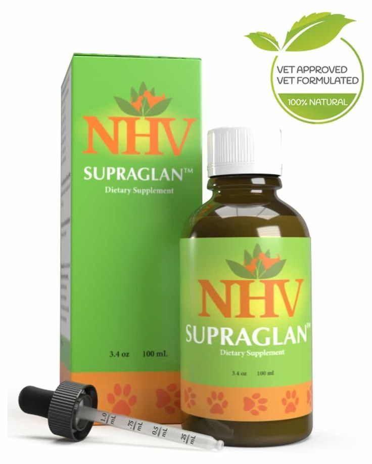 Supraglan™ for dogs   Diarrhea remedies, Natural remedies ...