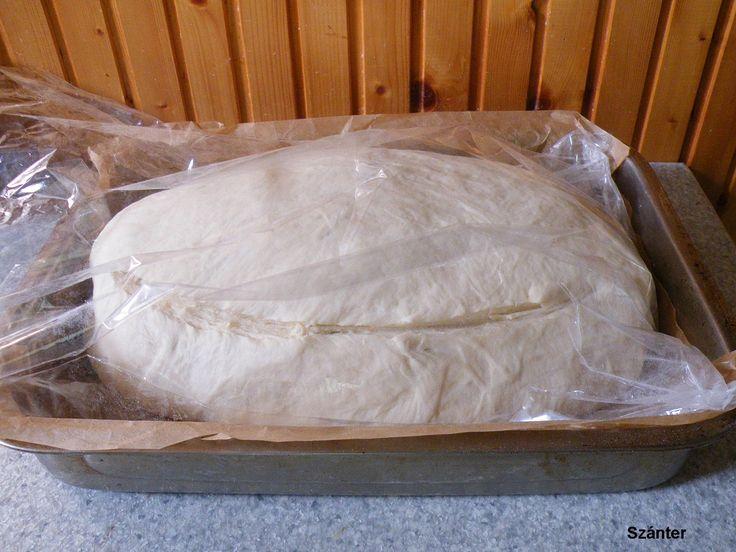 Szánter blogja.: Sütőzacskóban sült kenyér.