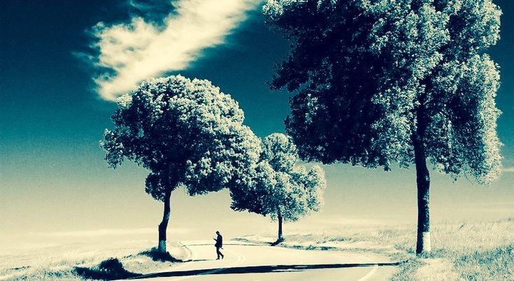 Versuche nicht, ein erfolgreicher, sondern ein wertvoller Mensch zu werden.  - Albert Einstein