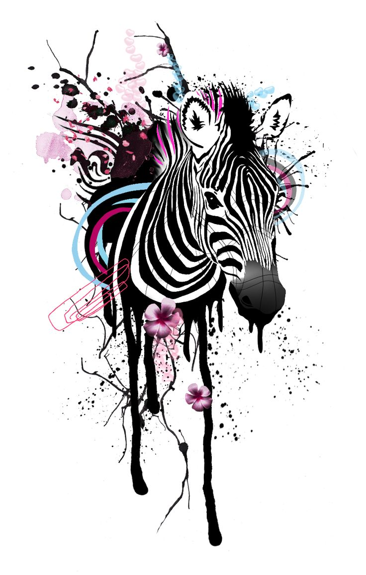 graphic zebra