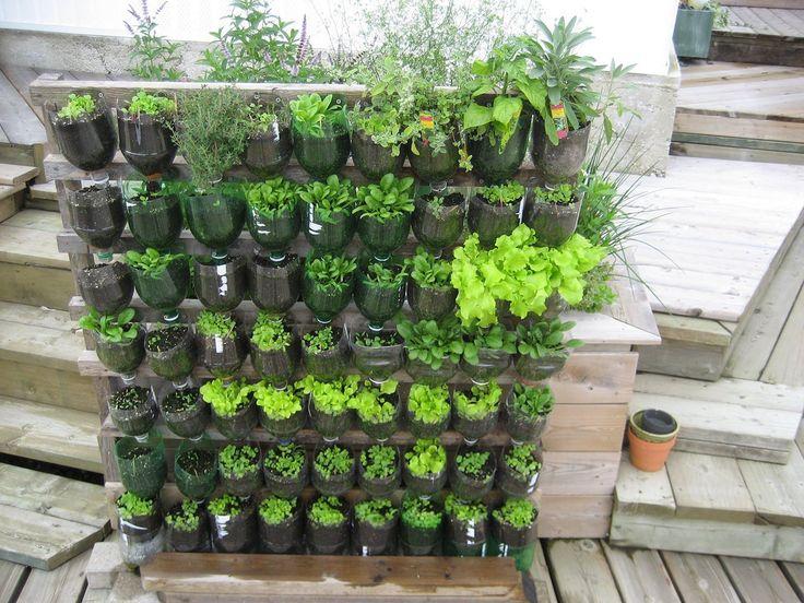 10+ Easy Vegetable Garden Layout Ideas For Beginner ...