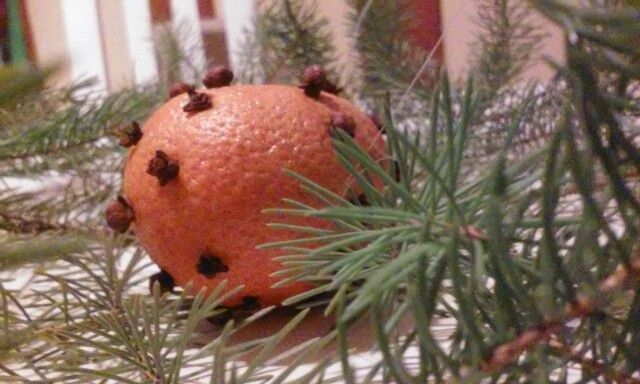Clementine and cloves make home smell vintage chrismas