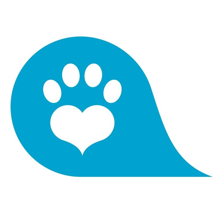 #followus on our NEW twitter - http://twitter.com/thevetapp #becauseweareawesome #whatwearebarkingabout