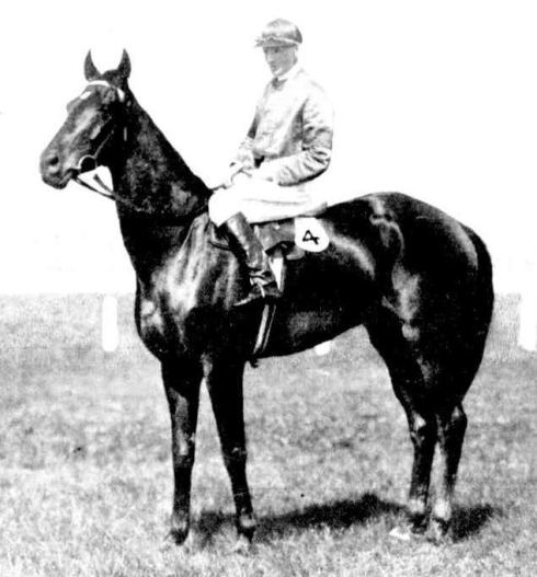 In 1911, The Parisian, a Western Victorian horse, won the Melbourne Cup.