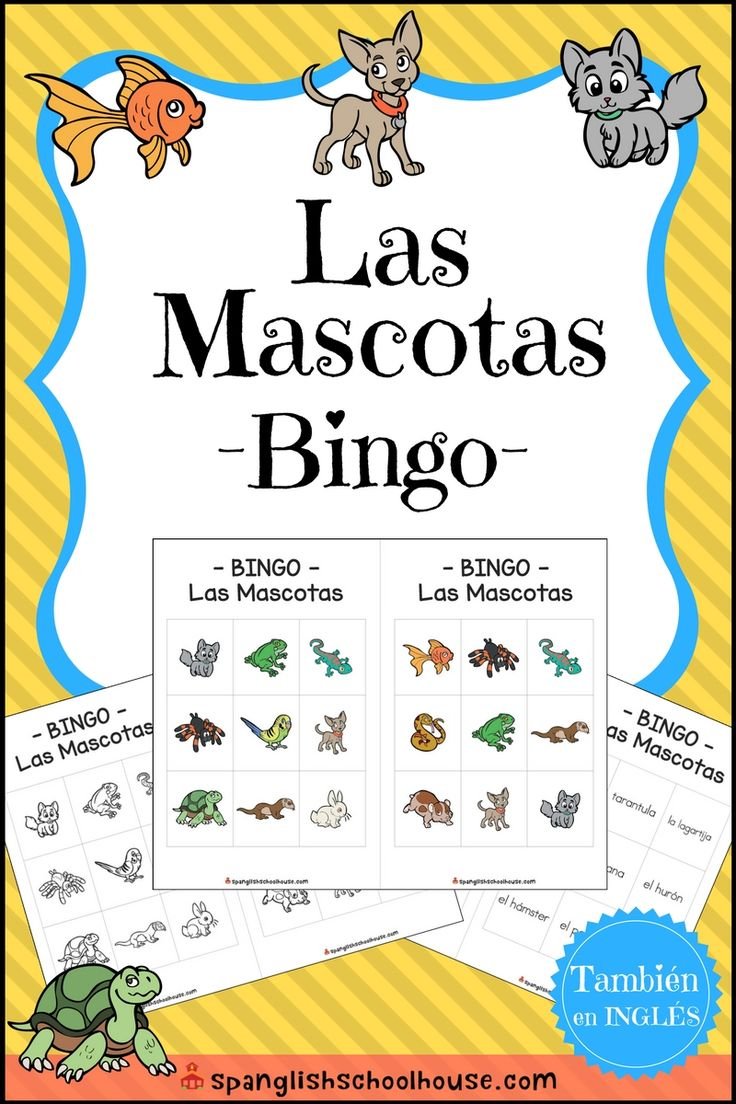 Get ready to practice Pet Vocabulary in Spanish through a classic game of BINGO!  There are 30 different player cards, and each card has nine squares.  There are 10 cards of each variation (color, B/W, text only) for different levels of play.  A full color caller card is also included that has the animal with the text underneath.