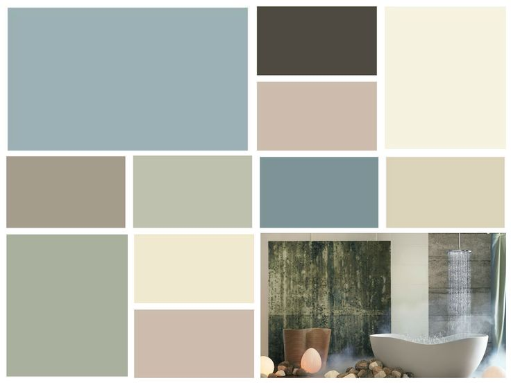 Chrysalis 2015 Color Forecast By Buyers Access Supplier