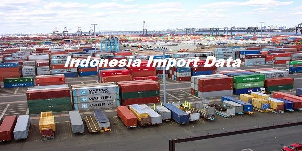 #Indonesia_import_data states that importing requires the lot of documentation including a pro forma invoice, certificate of origin, commercial invoice, bill of lading or airway bill, insurance certificate, packing list, etc.