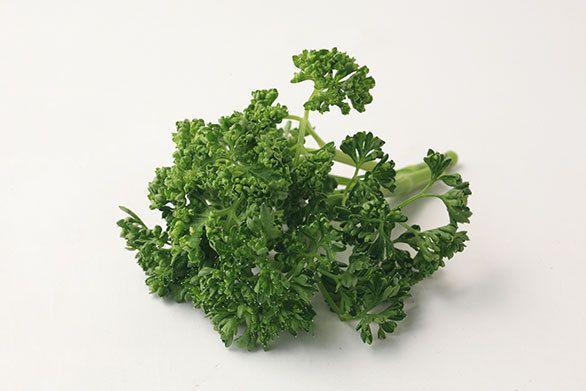 パセリ」はヨーロッパが原産の食用ハーブで、食欲増進、疲労回復、口臭予防などに効果があると言われています。スーパーでは通年売られており、とてもポピュラーな食材の一つです。  年間を通じてもっとも多く出荷されるのは12月ですが、パセリの香り成分であるアピオールには腸内細菌の繁殖を抑え、食中毒を予防する効果があるため、実は取り入れていただきたいのは梅雨時から夏にかけての時期。  マクロビ的にはほぼ中庸(陰と陽の中間のエネルギー)の食材と考えられており、つまり体を極端に冷やすものではないので、季節を問わず安心して食べることができます。おすすめの食べ方は、サラダやスープ、おひたしなど、添え物ではなくメインの食材として使うこと。  パセリの栄養価はとても高く、鉄分は野菜の中でトップと言われており、ビタミンCのほか、カルシウムも豊富に含んでいます。調理法で注意することは、ビタミンCの流出を防ぐこと。生で食べる、茹でる際は短時間で、スープやみそ汁にして汁ごといただく、などの工夫をすると、美肌、風邪予防、疲労回復、骨粗鬆症予防、貧血予防などに効果が期待