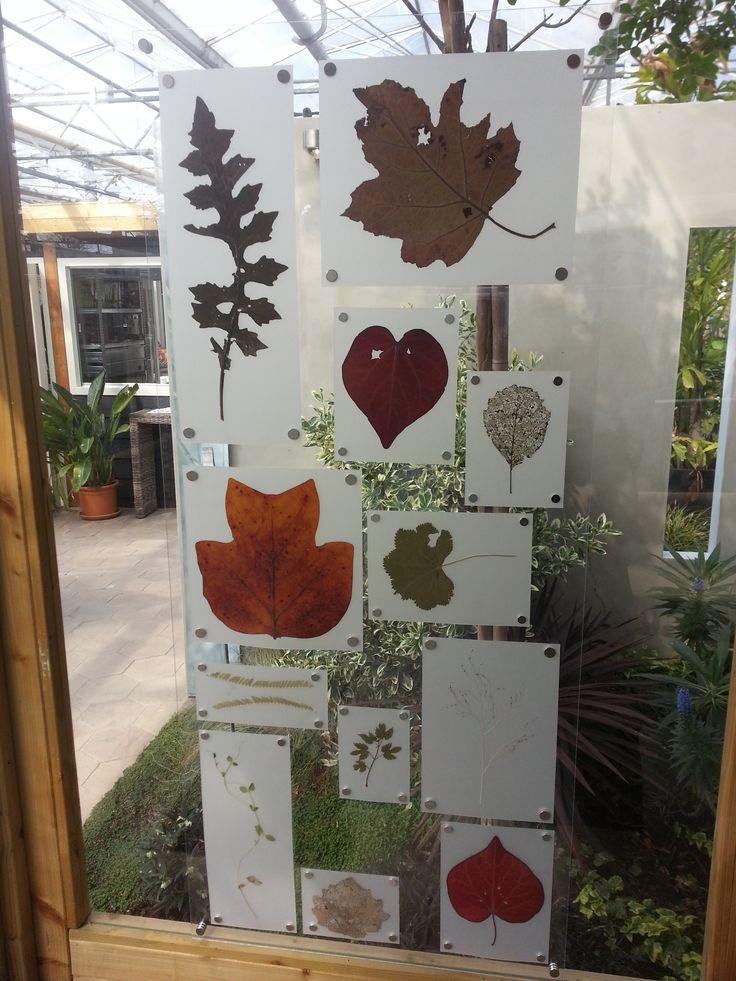 25 beste idee n over raam kunst op pinterest oude for Hangdecoratie raam