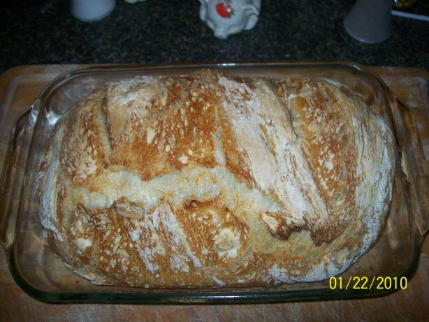 THIS RECIPE HAS BEEN CORRECTED! Please ignore the low ratings and give it a try. My apologies to those whose tried this recipe and failed. This method produces a ciabatta like texture with a wonderful crust. Nutri Flour Blend is a blend of white flour and wheat bran. Experiment with different blends - the result should be a light, holey, rustic style loaf. You will need at least 18 hours before this bread can be baked.