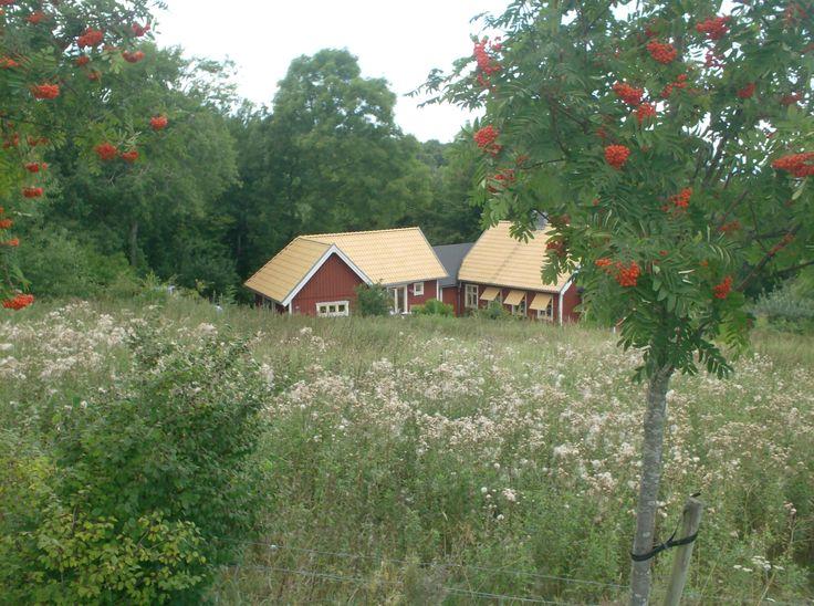 Farm, near Båstad in Sweden.