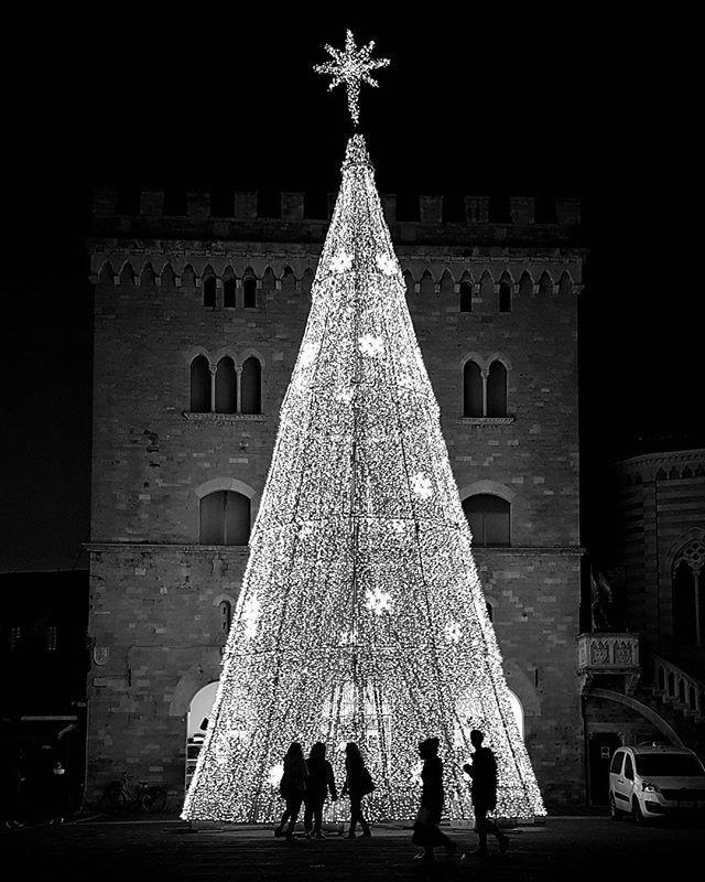 #christmas2016 #christmas #christmastree #natale #foligno #umbria #italy #streetphotography #silhouette #instagallery #instaphoto #blackandwhite #blacknwhite #biancoenero #scacco_matto_ #ig_bn #flair_bw #ig_bnw #photography #photos #picoftheday
