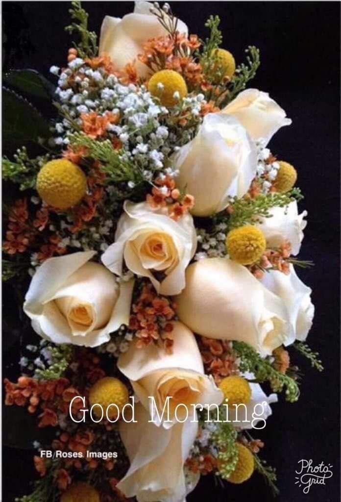 Pin By Narendra Pal Singh On Good Morning Pinterest Morning