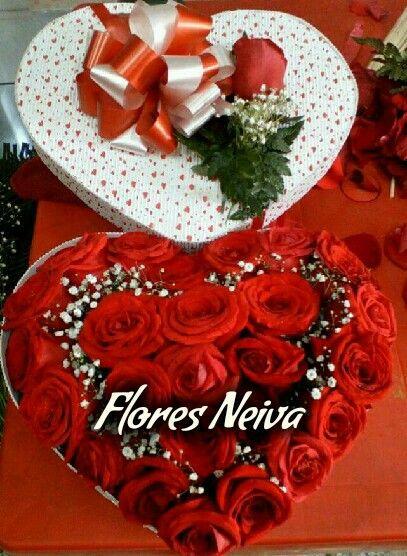Regala flores neiva 3153335017