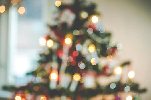 Mirra Photography - Christmastree