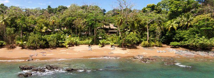 Drake Bay, Costa Rica | Copa De Arbol Beach and Rainforest Resort