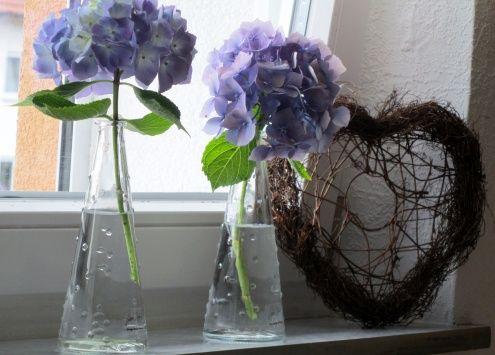 Hortensien auf der Fensterbank , Tags Fensterbank + Herz + Hortensie ...