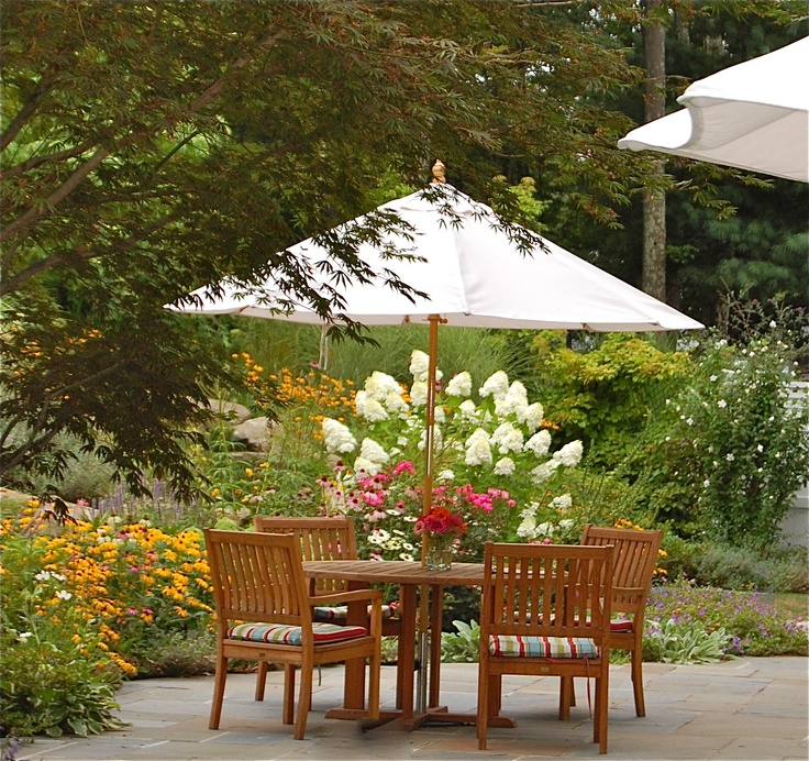 Patio In Garden Limelight Hydrangea Knockout Roses