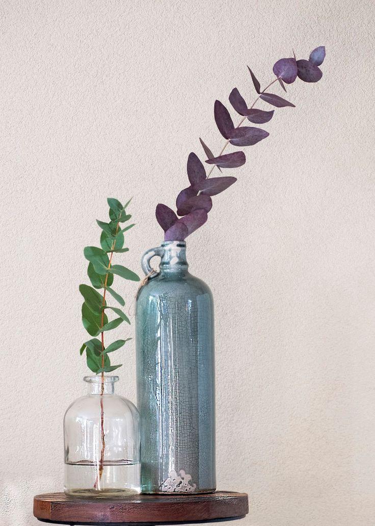 Eucalyptus op kleur brengen (Diy decoratie) Eucalyptus is een plant dat overal mooie staan in de huis als decoratie. Eucalyptus kun je op een krans gebruiken, op een bruiloft om te versieren, op een boeket, op tafel enz.,enz. Eucalyptus heeft een heel fris groen kleur. Maar weet je dat jij kunt op ander kleur brengen, zonder veel te doen. Met een bepaalde vloeistof kun je de kleur van eucalyptus veranderd. www.elsarblog.com #blogfeestje