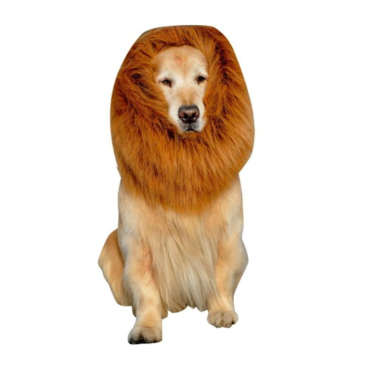 Pet Dog Cat Costume Lion Mane Wig For Halloween Party *** Want to know more, click on the image.