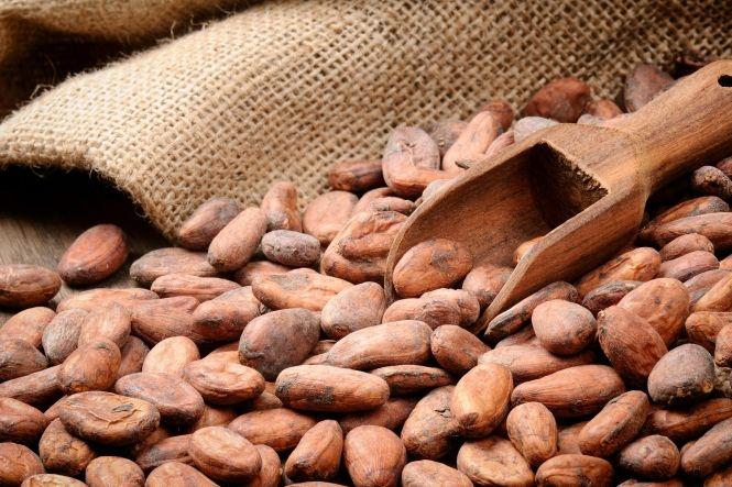 Ziarna kakaowca - zdrowa alternatywa dla czekolady