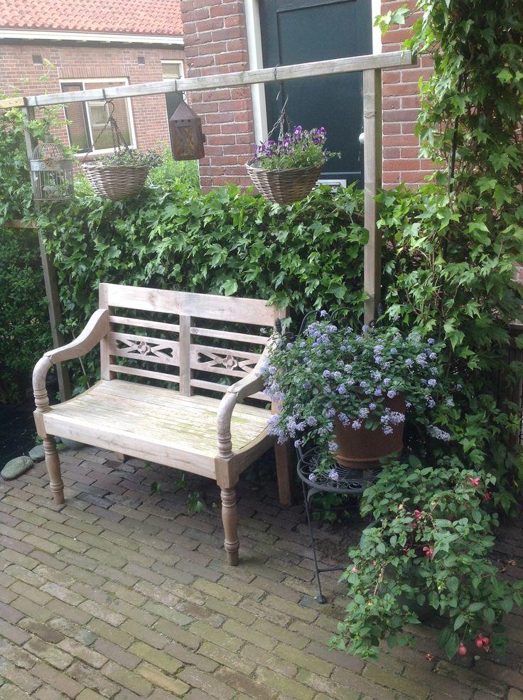 Amerikaanse sering, fuchsia, stationsbank en hedra in de de achertuin van mij kleine tuin