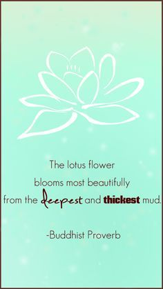 no mud no lotus quote - Google Search