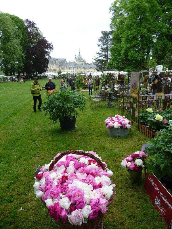 Les #JournéesdesPlantes de Courson à Domaine de Chantilly (officiel) en photos #Événement http://www.pariscotejardin.fr/2015/05/les-journees-des-plantes-de-courson-a-chantilly-en-photos/