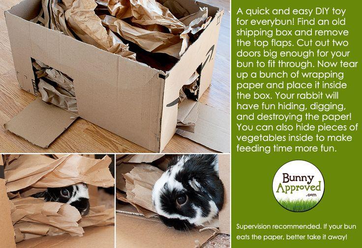 DIY Rabbit Toy Idea - Digging Box! http://bunnyapproved.com/diy-rabbit-toy-ideas