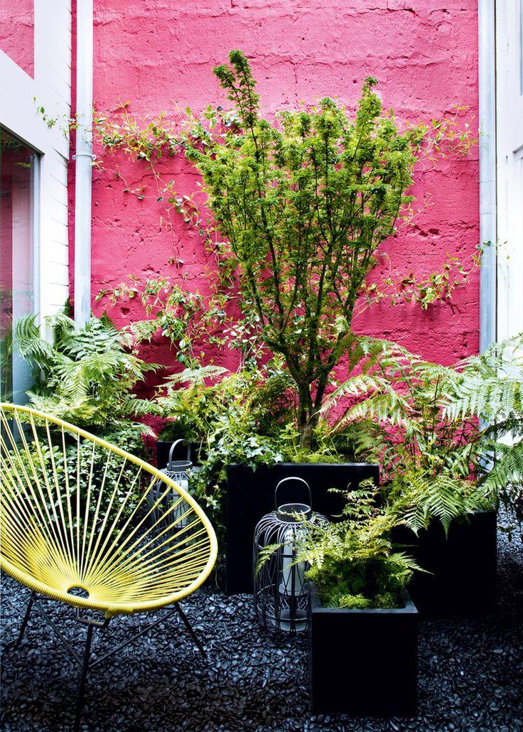 Il est tout à fait possible de transformer son patio en un lieu à la fois exotique et coloré. Les « Mauvaises Graines » ont imaginé ce patio comme un sous-bois grâce à un jeu de couleurs et de plantations. De hautes fougères ont été placées dans des pots de pierre noire et le sol a été recouvert de galets noirs pour créer une unité. La peinture rouge sur le mur et le fauteuil jaune structure l'espace tout en donnant une impression d'ailleurs (c) Marie-Claire Maison