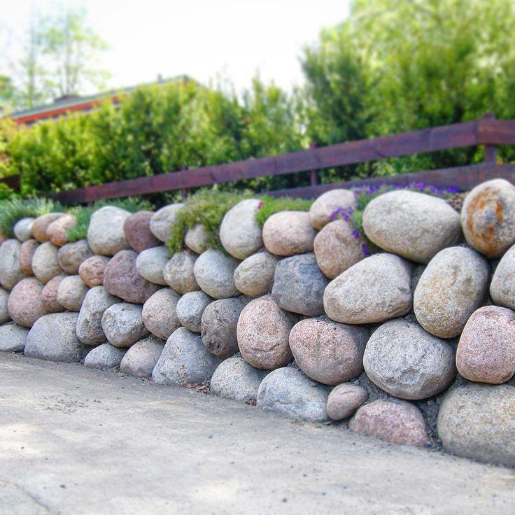 Her er et hyggelig gjensyn med en flott mur med store rullesteiner vi laget for et par år siden. Store rullesteiner er veldig imponerende å se på, uten å føles ruvende siden det beholder et naturlig og mykt uttrykk - og det blir ekstra dekorativt med krypende planter på og mellom de øverste steinene!  #bygartnerne #anleggsgartner #hagersomvarerlenger #oslo #rullestein #elvestein #mur #naturstein #hage #hageliv #hageglede #hagearbeid #hagetips