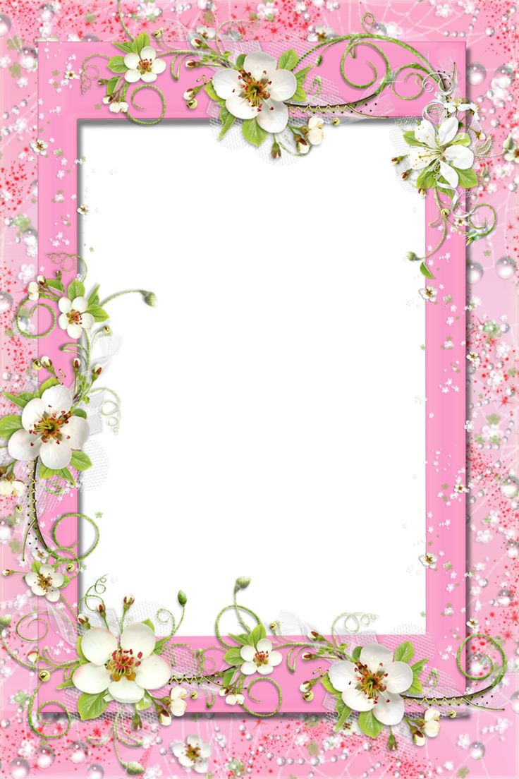 transparent pink png frame with flowers photo frames pinterest
