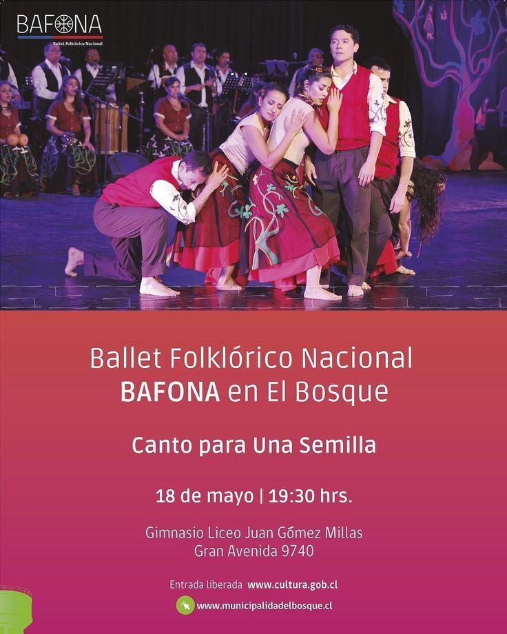 BAFONA en El Bosque. Su presentación será el  jueves 18 en el Liceo Juan Gómez Millas. La entrada es liberada