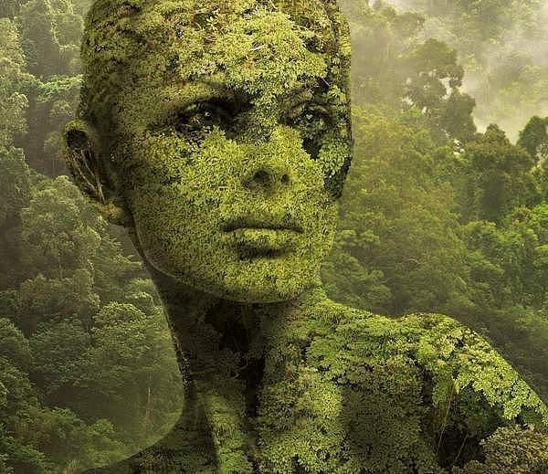 Nature by Igor Morski