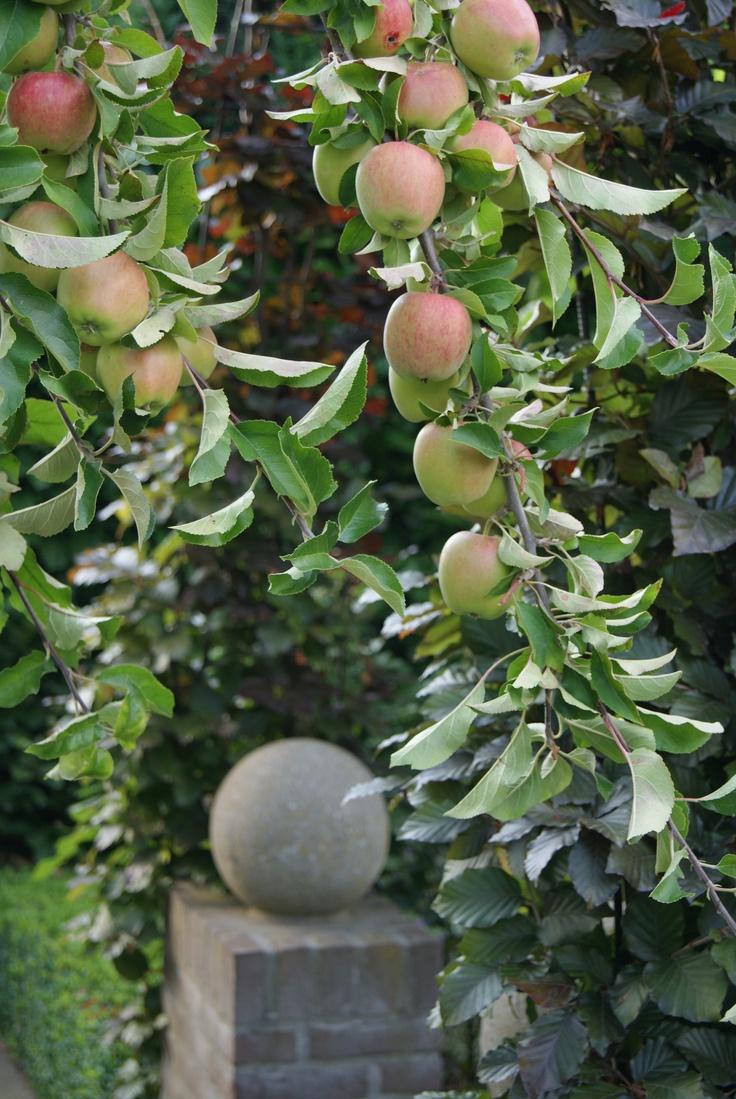 lekkere appeltjes