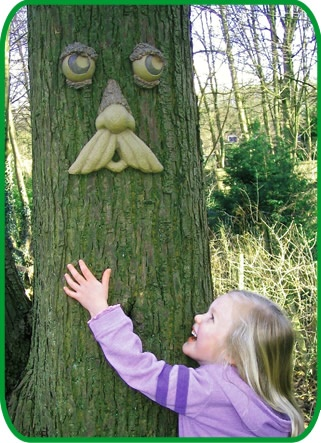 Love these tree faces