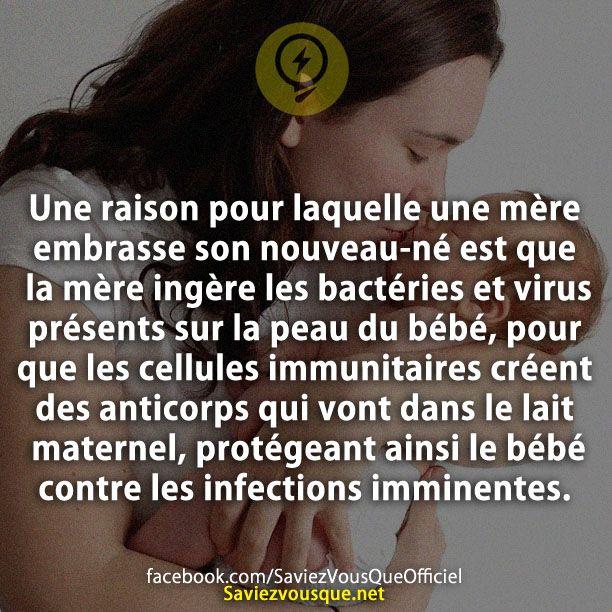 Une raison pour laquelle une mère embrasse son nouveau-né est que la mère ingère les bactéries et virus présents sur la peau du bébé, pour que les cellules immunitaires créent des anticorps qui vont dans le lait maternel, protégeant ainsi le bébé contre les infections imminentes. | Saviez Vous Que?