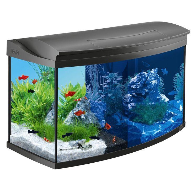 Animalerie  Kit aquarium complet Tetra AquaArt Evolution Line LED 100 L  dimensions : L 77 x l 38 x H 482 cm 100 L environ