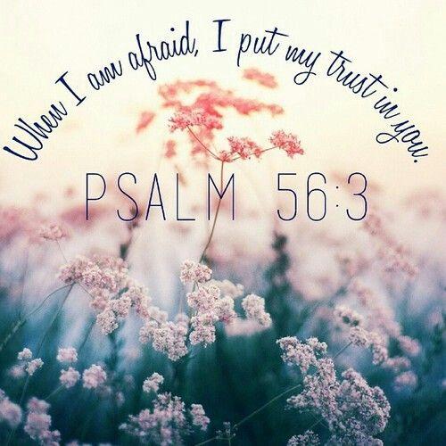 When I am afraid, I put my trust in you. Psalm 56:3 #WordOfGod #Psalm