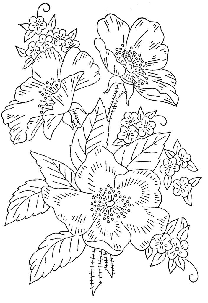 3022 best embroidery patterns images on Pinterest