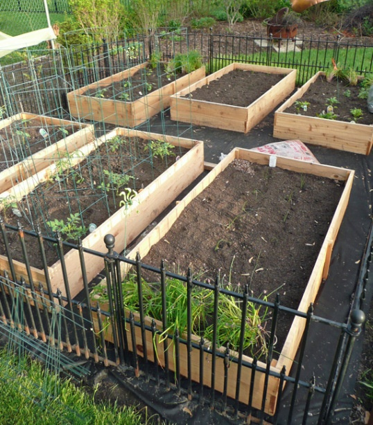 15 Stunning Container Vegetable Garden Design Ideas Tips: Vegetable Garden Box DIY