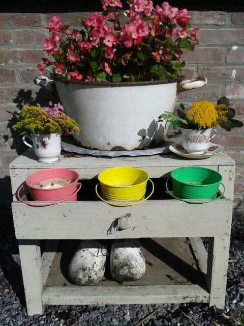 Oud kastje doet dienst als planten tafel buiten