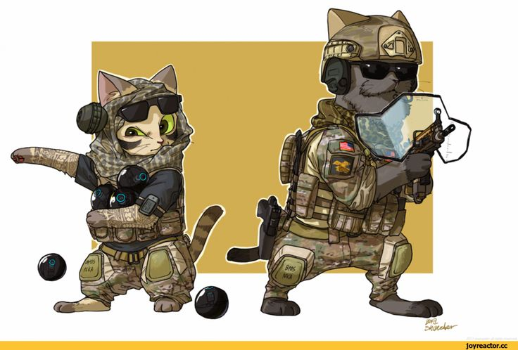 Rainbow Six Siege,Rainbow Six,Игры,котики,Shurueder,artist,Игровой арт,game art