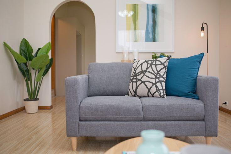 2 seater grey sofa, faux indoor plant, blue cushion, kmart floor lamp